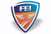 Instituto F.E.I