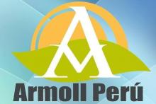 Armoll consulting